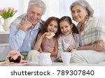 portrait of a happy senior... | Shutterstock . vector #789307840