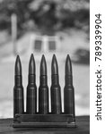 Small photo of Rifle Gun Ammo in Black and White