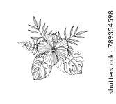 tropical flowers   hibiscus ... | Shutterstock .eps vector #789354598
