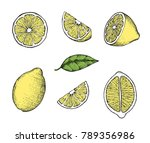 set of stylized hand drawn... | Shutterstock .eps vector #789356986