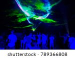 silhouettes of concert crowd at ...   Shutterstock . vector #789366808