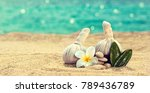 spa still life with herbal... | Shutterstock . vector #789436789
