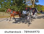 New York City Usa Oct 27  Horse ...