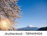 mt.fuji in kawaguchiko lake... | Shutterstock . vector #789449404