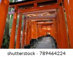 kyoto japan   november 11  2017 ... | Shutterstock . vector #789464224