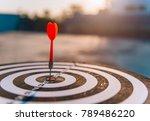 red dart arrow hit in the... | Shutterstock . vector #789486220