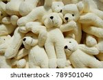 fluffy teddy bear | Shutterstock . vector #789501040