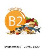 vitamin b2  riboflavin . food... | Shutterstock . vector #789531520