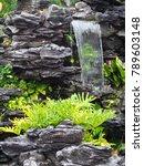 tropical style landscape... | Shutterstock . vector #789603148