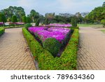Small photo of Botanical wall decoration adjoin bricks sidewalk way in public park