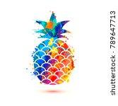 pineapple icon on white... | Shutterstock .eps vector #789647713