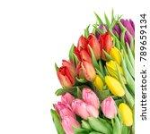 tulip flowers. fresh spring... | Shutterstock . vector #789659134