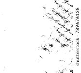 grungrunge black and white... | Shutterstock . vector #789676138