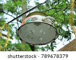 Zinc Enamelled Lamps Create A...
