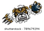 a bulldog angry animal sports... | Shutterstock .eps vector #789679294