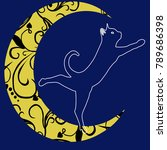 cat on the moon | Shutterstock .eps vector #789686398