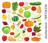bright vector illustration of... | Shutterstock .eps vector #789736150