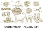 knitting  knit needle  hook ... | Shutterstock .eps vector #789807634