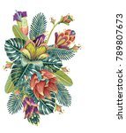 beautiful seamless vector... | Shutterstock .eps vector #789807673