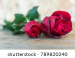 red rose flower nature... | Shutterstock . vector #789820240