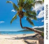 Palm Tree Tropical Beach Seychelles - Fine Art prints