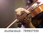 woman play violin | Shutterstock . vector #789837550