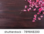 chinese new year festival... | Shutterstock . vector #789848200
