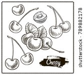 cherry drawing set. isolated... | Shutterstock .eps vector #789882178