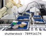 industry 4.0 robot concept .the ... | Shutterstock . vector #789916174