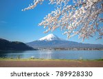 good morning mt.fuji mountain... | Shutterstock . vector #789928330
