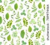 seamless greenery pattern with... | Shutterstock .eps vector #789974464