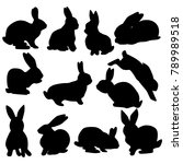 collection of black silhouettes ... | Shutterstock .eps vector #789989518