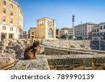 ancient amphitheater and cute... | Shutterstock . vector #789990139