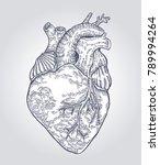 hand drawn human heart. vector... | Shutterstock .eps vector #789994264