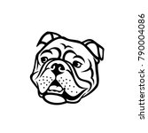 english bulldog face   isolated ... | Shutterstock .eps vector #790004086