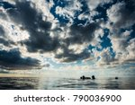 san andres island  colombia _... | Shutterstock . vector #790036900