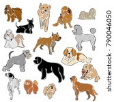 set of dog breeds vector image... | Shutterstock .eps vector #790046050