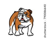 english bulldog   isolated... | Shutterstock .eps vector #790086640
