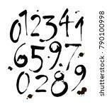 vector set of calligraphic... | Shutterstock .eps vector #790100998