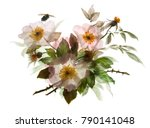 branch of blossom dogrose with... | Shutterstock . vector #790141048