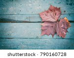 wet maple leaf on the blue old... | Shutterstock . vector #790160728