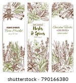 herb and spice sketch banner of ... | Shutterstock .eps vector #790166380