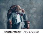 portrait of posh classy chic... | Shutterstock . vector #790179610
