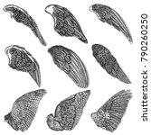 hand drawn illustration of bird ... | Shutterstock .eps vector #790260250