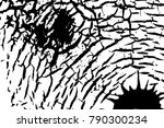 vintage effect grit texture.... | Shutterstock .eps vector #790300234