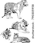 vector drawings sketches... | Shutterstock .eps vector #790305958