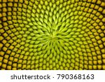 Spiral Pattern In The Center O...