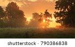 sunny spring meadow. stunning... | Shutterstock . vector #790386838
