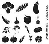 different kinds of vegetables... | Shutterstock .eps vector #790395523