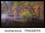 autumn river forest | Shutterstock . vector #790438594